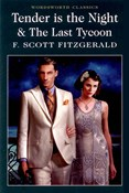 Francis Scott Fitzgerald – Tender is the Night + Last Tycoon