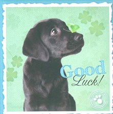 Good Luck! Image Books